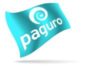 Flag - Paguro Turquoise