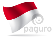 Flag - Indonesia
